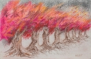 Brennende Allee