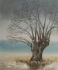 Baum am Bodden